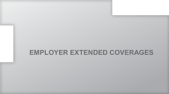 Employer Extended Coverage