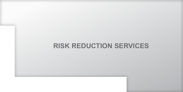 Risk Reduction Services